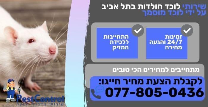 לוכד חולדות בתל אביב